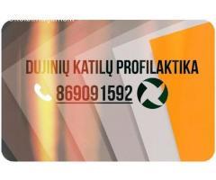 Dujiniu katilu profilaktika 869091592