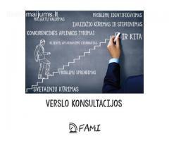 FAMI verslo konsultacijos