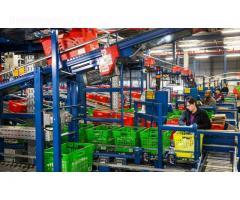 Darbas Olandijoje fabrikuose ir sandeliuose
